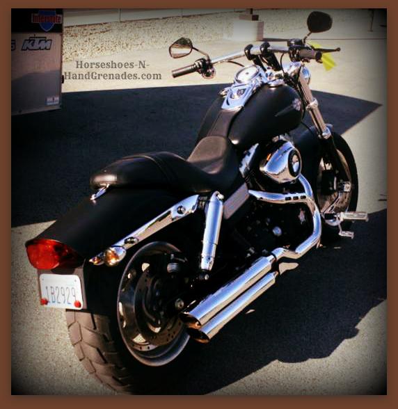 Our Beloved Harley FatBob