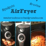 Avalon Bay AirFryer 100B Review