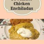 30 Minute Chicken Enchiladas
