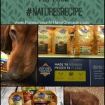 Healthy and Affordable Pet Food #NaturesRecipe