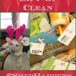 Give The Gift of Clean #ShedHappens