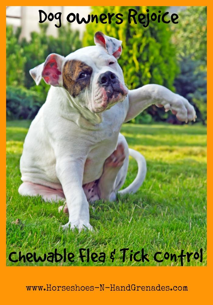 Bravecto Chewable Flea & Tick Control