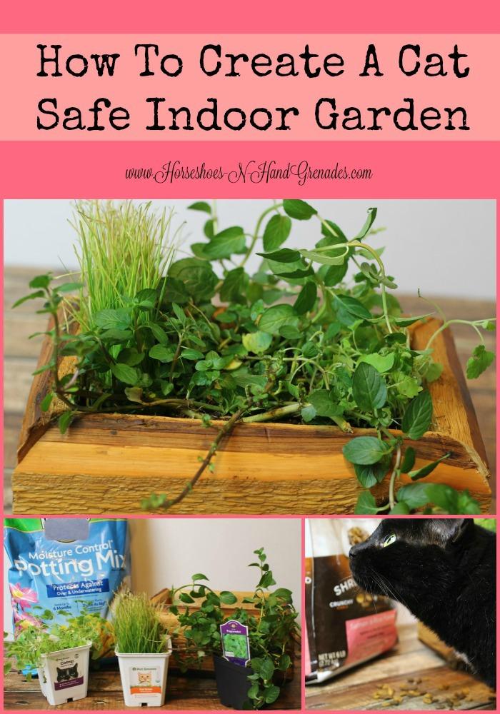 Cat Safe Indoor Garden