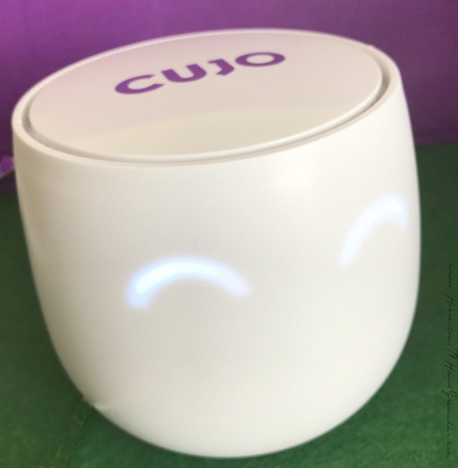 Cujo Close Up